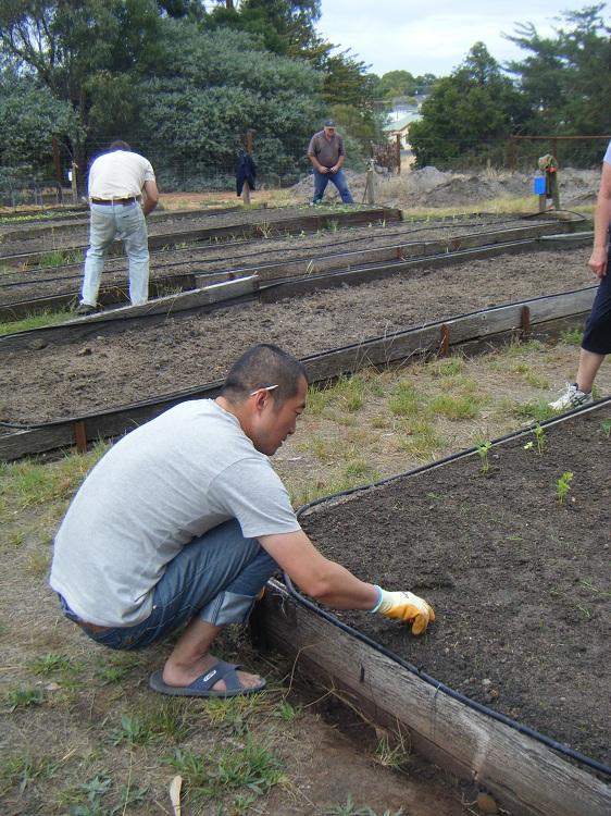 Community Garden Work